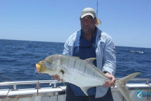 Trevally Wa best fishing
