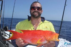 Coronation Trout WA fishing charter blue lightning