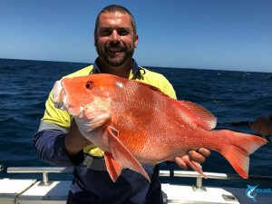 Red Emperorangler fishing charter wa