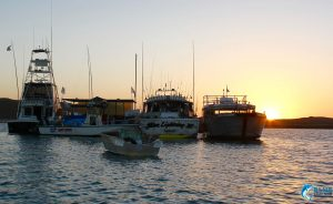 blue Lightning charters fleet wa sunset