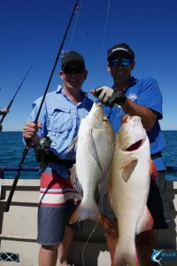 fishing double header WA blue lightning charters