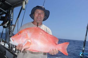 Red emperor wa fishing charter