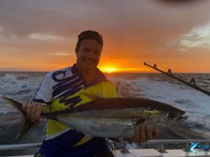 yellow fin tuna abrolhos islands fishing