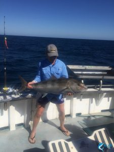 Blue Lightning fishing charters Abrolhos Islands WA