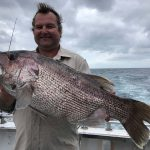 Dhu fish Abrolhos islands wa experience fishing charter