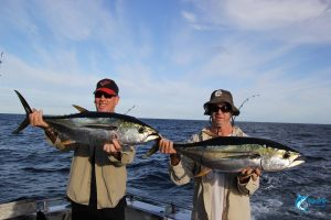 Yellow fin tuna abrolhos islands liveaboard fishing charter