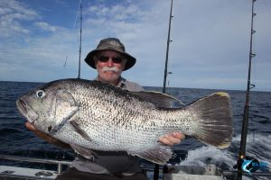 Dhu Fish Abrolhos Islands fishing charter blue lightning charters