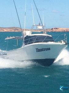 Huntree Blue lightning charters fleet