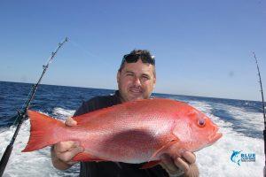 Montebello Islands crimson sea perch