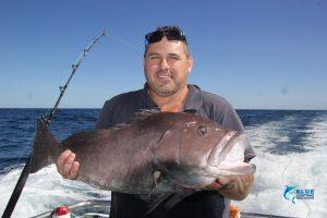 rankin cod Montebello islands wa
