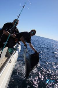 Montebello Islands angler 1st ever sailfish
