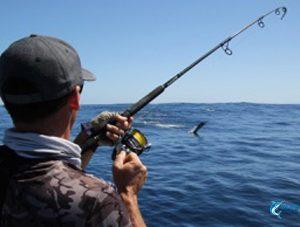 Blue Lightning Billfishing WA